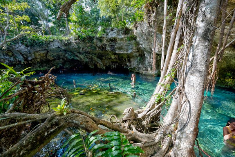 Der Gran Cenote bei Tulum an der Riviera Maya